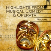 Highlights from Musical Comedy & Operetta Vol.1