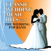 The Chicken Dance - The Wedding Pop Band Cover Art