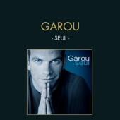 Sous le vent - Garou & Céline Dion