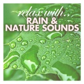 Relax With Rain & Nature Sounds