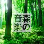 森の音楽 (休日の森林浴)