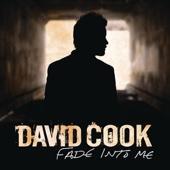 Fade Into Me (Radio Edit) - Single cover art