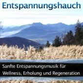 Sanfte Entspannungsmusik für Wellness, Erholung und Regeneration (Entspannung / Klangkulissen)