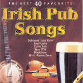 The Best 40 Favourite Irish Pub Songs