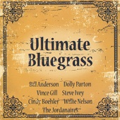 You're My Perfect Reason - Dolly Parton & Bill Anderson