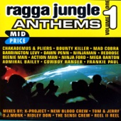 Ragga Jungle Anthems Vol. One