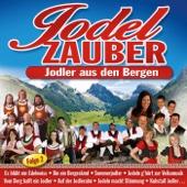 Jodelzauber - 40 Jodler Aus Den Bergen CD 2