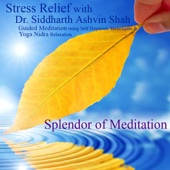 Stress Relief With Dr. Siddharth Ashvin Shah - Guided Meditation Using Self Hypnosis Techniques and Yoga Nidra Relaxation - Splendor of Meditation