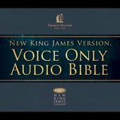 Thomas Nelson, Inc. - NKJV Voice Only Audio Bible  (Unabridged) artwork