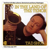 Tad Shull, Mike LeDonne, Dennis Irwin & Kenny Washington - In the Land of the Tenor artwork
