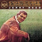 Jerry Reed - She Got the Goldmine (I Got the Shaft) artwork