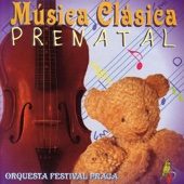 Música Clásica Prenatal