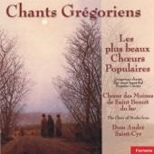 Chants grégoriens : Les plus beaux choeurs populaires (Gregorian Chants)