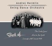 Best of Swing Dance Orchestra