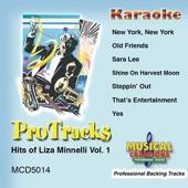 Sara Lee (Karaoke Version Teaching Vocal)