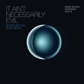 It Ain't Necessarily Evil - Mari Boine Remixed, Vol. II