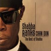 Mr. Loverman (feat. Deborahe Glasgow) - Shabba Ranks feat. Deborahe Glasgow