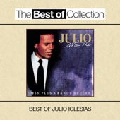 Ma vie - Mes plus grands succès (Best of Julio Iglesias) - Julio Iglesias