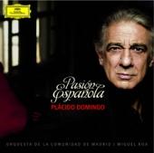 Porque te quiero - orchestrated by Gabriel Fernández Álvez - Plácido Domingo, Orquesta de la Comunidad de Madrid & Miguel Roa