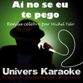 Ai Se Eu Te Pego (Live) [Rendu célèbre par Michel Teló] {Version karaoké}