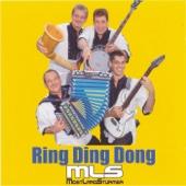 Ring Ding Dong - Mostlandstürmer
