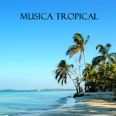 Musica Tropical (Fiesta Latina)