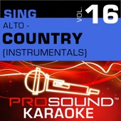 Download ProSound Karaoke Band - Valentine (Karaoke Instrumental Track) [In the Style of Martina McBride & Jim Brickman]
