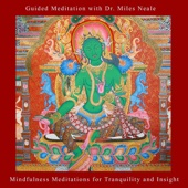 Mindfulness Meditations for Tranquility and Insight - Guided Meditation With Dr. Miles Neale