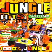 Jungle Hits Volume. 3