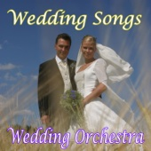 Wedding Orchestra - Pachelbel's Canon in D Major artwork