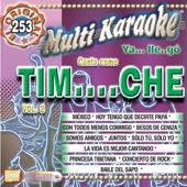 Canta Como Tim....Che Vol. 2