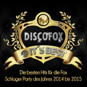 Alles was ich brauche bist du (Party-Fox-Mix)