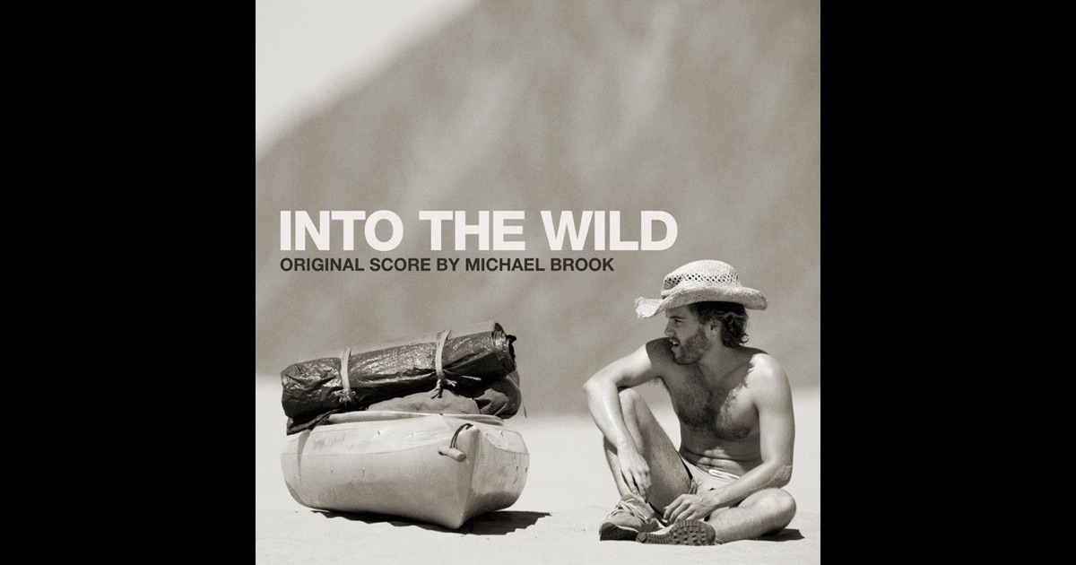 Essay on into the wild movie