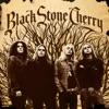 Black Stone Cherry, Black Stone Cherry