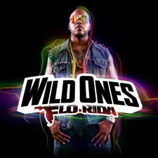 Wild Ones artwork