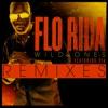 Wild Ones (Remixes) [feat. Sia], Flo Rida