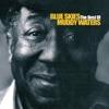 Blue Skies - The Best of Muddy Waters, Muddy Waters