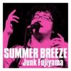 SUMMER BREEZE - Single ジャケット写真