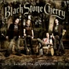 Folklore and Superstition, Black Stone Cherry
