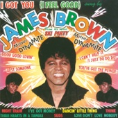 James Brown & His Famous Flames - I Got You (I Feel Good) bild