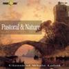 Antonio Vivaldi - The Four Seasons - Summer - Presto