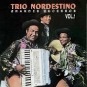 Na Emenda - Trio Nordestino