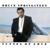 Tunnel of Love, Bruce Springsteen