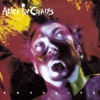 Facelift, Alice In Chains