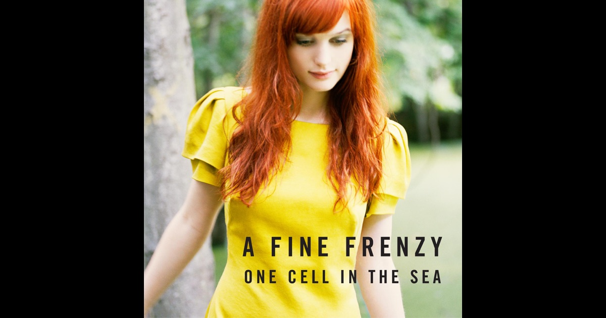 A fine frenzy - almost lover official music video first version (one cell in the sea) 2007