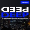 Deep, Vol. 13 - The Deeper Side of House Music