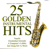 25 Golden Instrumental Hits