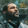 What's Going On - 40th Anniversary (Super Deluxe), Marvin Gaye