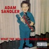 What the Hell Happened to Me? — Adam Sandler