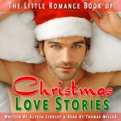 Alyssa Lindsey - The Little Romance Book of Christmas Love Stories: A Collection of Festive, Short, Romantic Stories for the Holiday Season (Unabridged)  artwork